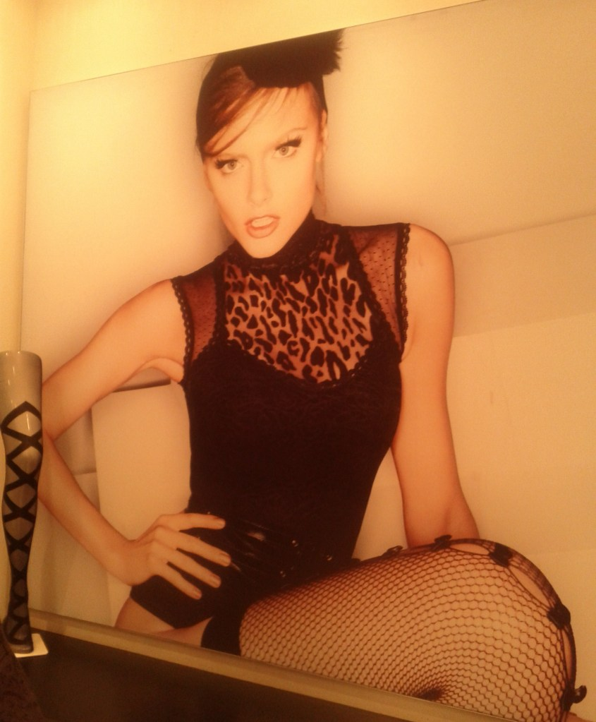 Poster with bodysuit & stockings