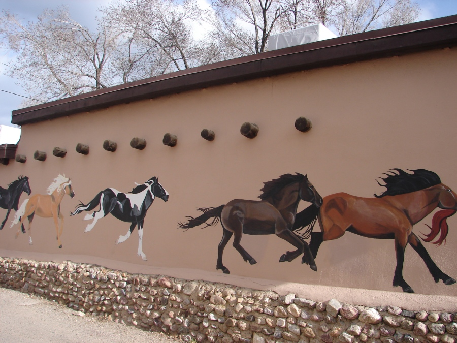 Half of a Horse Mural on Building