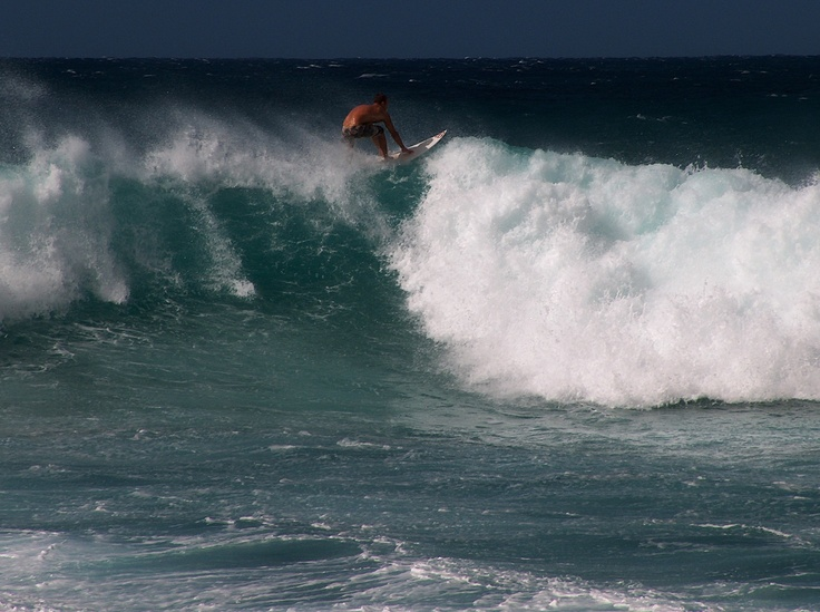 surfer - north shore, Hawaii