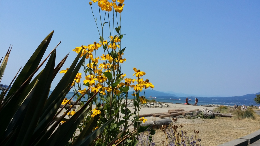 Sunset beach, West End, Vancouver.