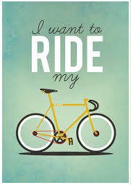 bike2 (2)