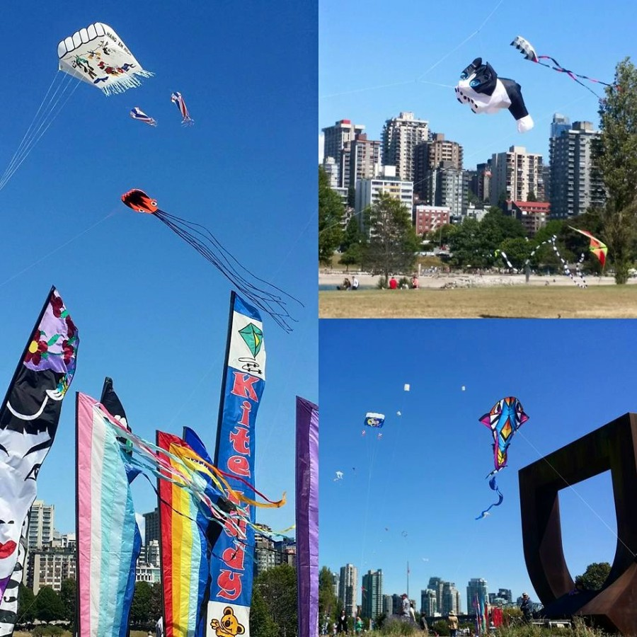 Kite Festival Vanier Park - go fly a CAT!