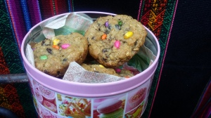 My pride inspired cookies. Actually Oatmeal/Raisin with a splattering of rainbow coloured Indian Fennel candy.