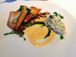 Cobia with beans and risotto