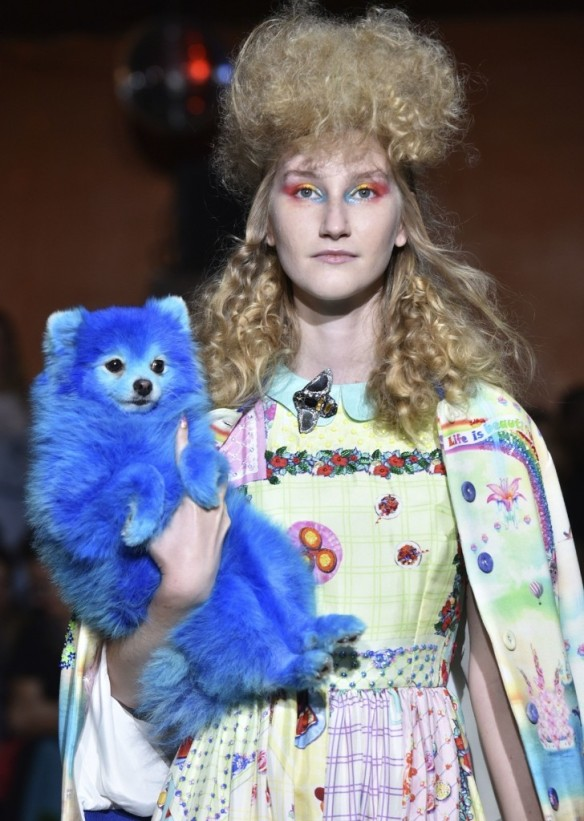 A model holding a dog painted in blue wears a creation for Manish Arora's Spring-Summer 2017 ready-to-wear fashion collection. AP Photo/Zacharie Scheurer