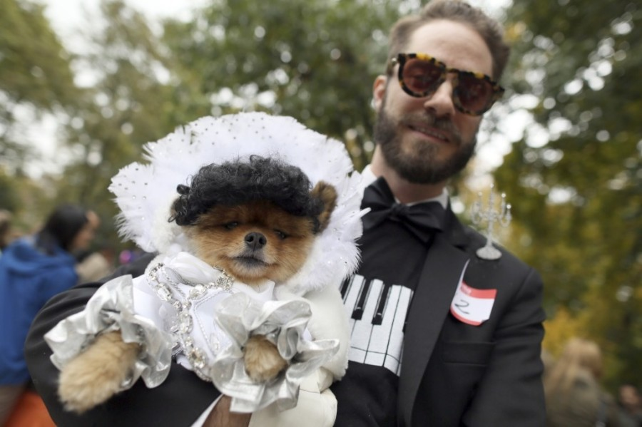 Eric Launder in a piano costume and his Pomeranian Simon in a Liberace costume in New York. AP Photo/Mary Altaffer