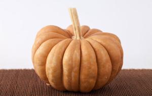 pumpkinsfairytale